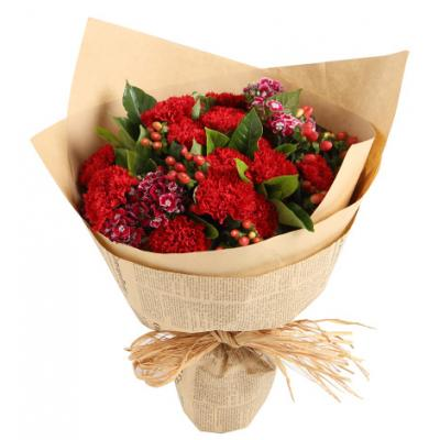 温馨思念----红色康乃馨16枝,石竹梅5枝,红豆3枝