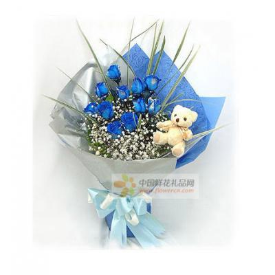 蓝色爱恋----11枝蓝色妖姬(昆明产),5寸小熊